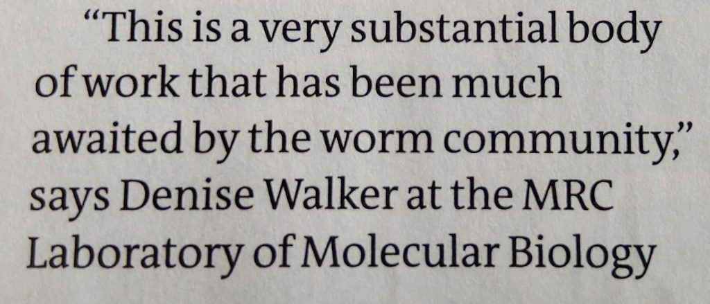 """This is a very substantial body of work that has been much awaited by the worm community,"" says Denise Walker at the MRC Laboratory of Molecular Biology"